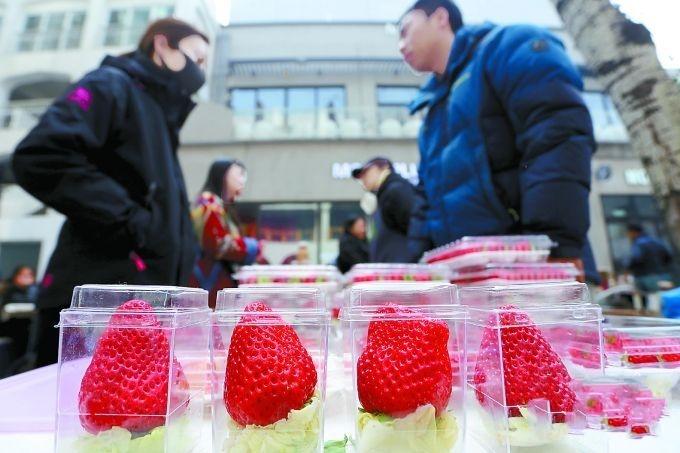 """""""有机农夫市集""""北京流行 这种有机蔬菜是否值得相信?"""