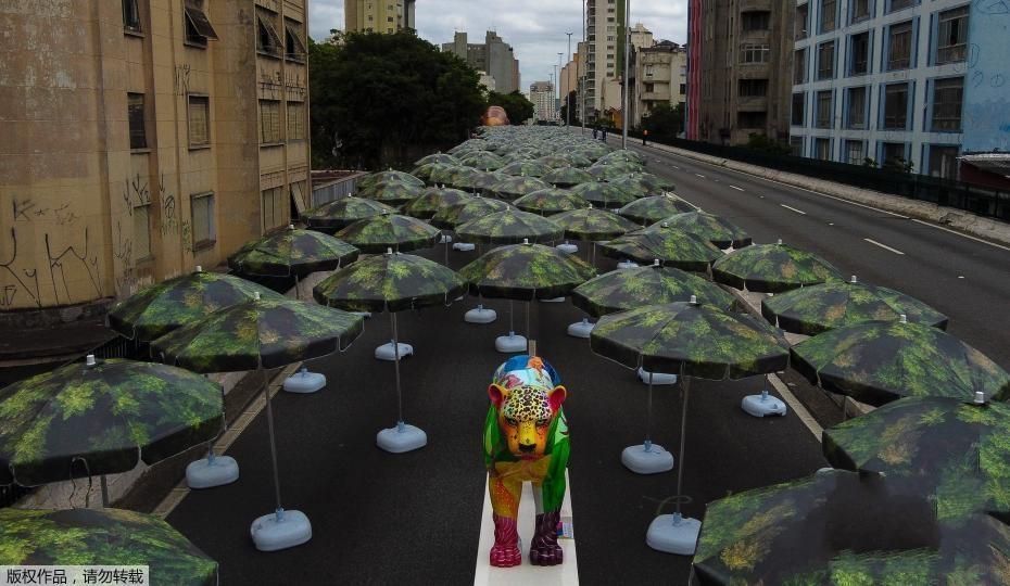 """巴西艺术家高架桥上打造""""森林"""" 警示人们""""雨林之痛"""""""