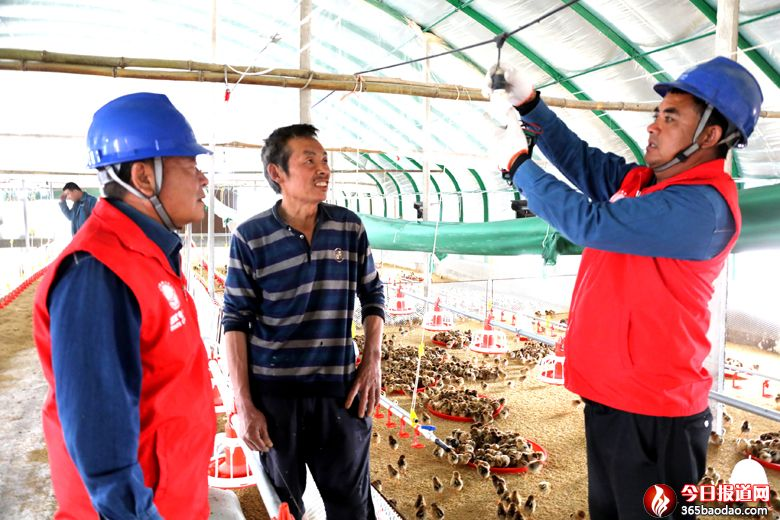 国网临朐县供电公司:进棚把脉助力特色养殖