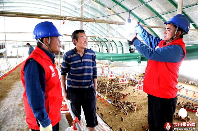"""国网临朐县供电公司:""""电亮""""特色产业"""