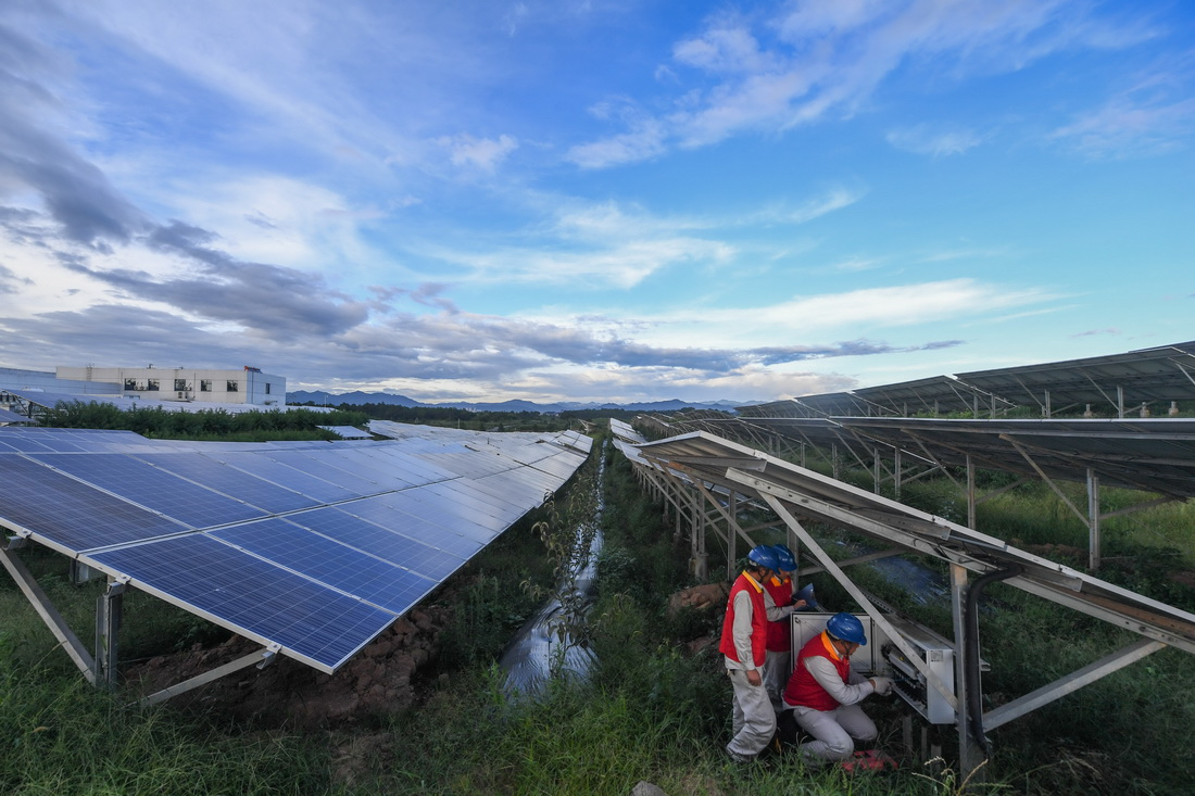 浙江东阳:积极推进光伏项目 让清洁能源进入千家万户