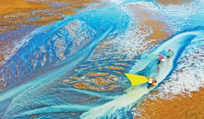 持续推广生态健康养殖模式 推动渔业健康发展