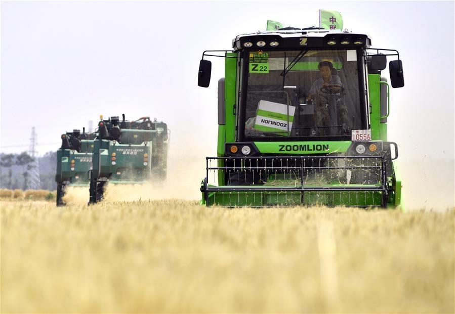 """习近平总书记关切事丨让农民挑上""""金扁担""""――农业现代化的生动实践扫描"""