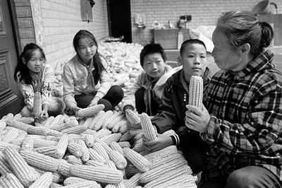 学农事 惜粮食