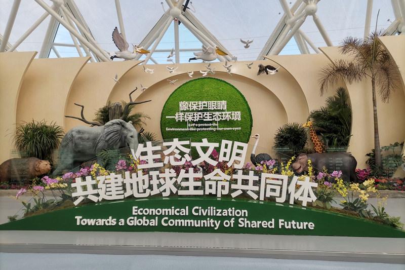 """走进2021世园会唯一的""""学校园"""":感受独特的中国文化"""