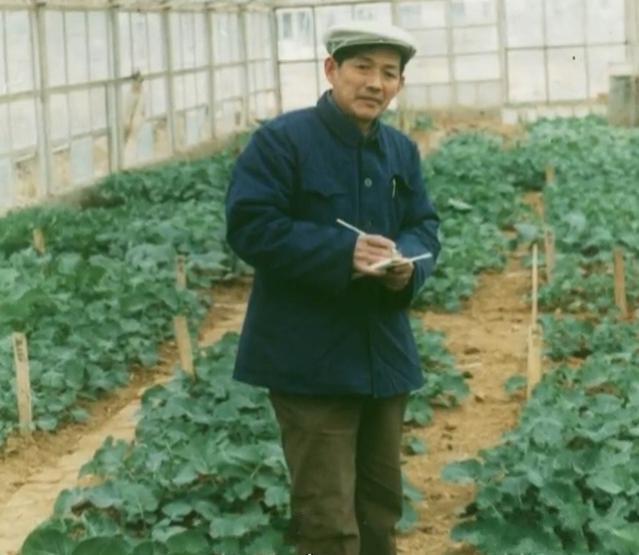 """国宝级""""院士用一生爱一花 较劲60年解决油菜育种难题"""