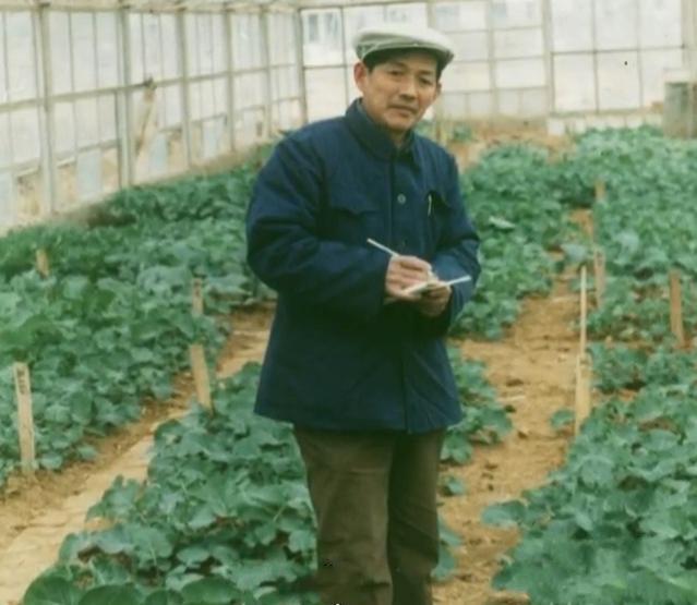 """""""国宝级""""院士用一生爱一花 较劲60年解决油菜育种难题"""