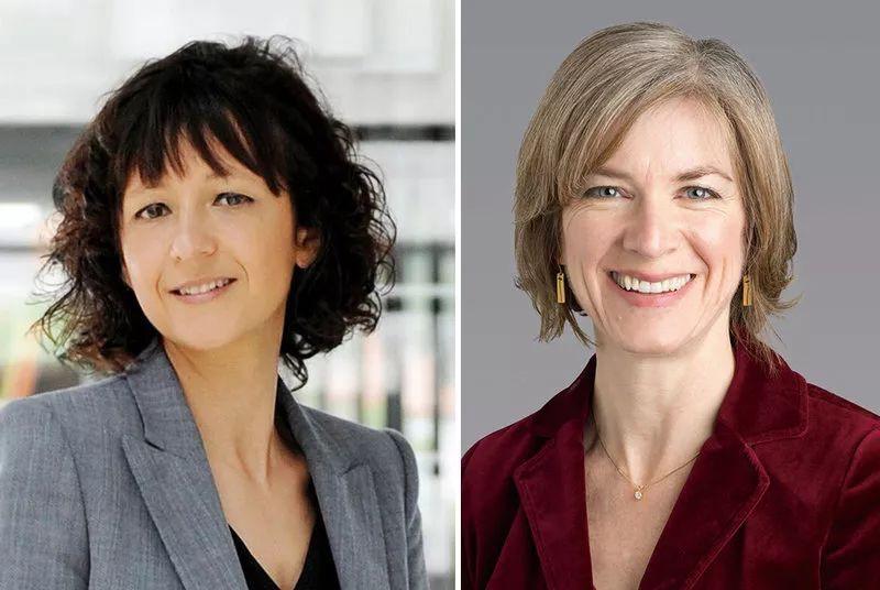 两名女科学家因为基因编辑技术获诺贝尔化学奖,女性诺奖得主增至7人