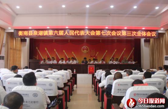 衡南县泉湖镇民生实事项目人大代表票决制让代表更有参与感 群众更有收获感38.png