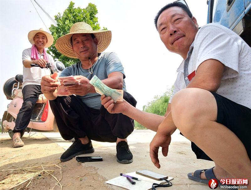 """山东郯城:一个电话 社区""""党员帮工队""""上前解决麦收难"""
